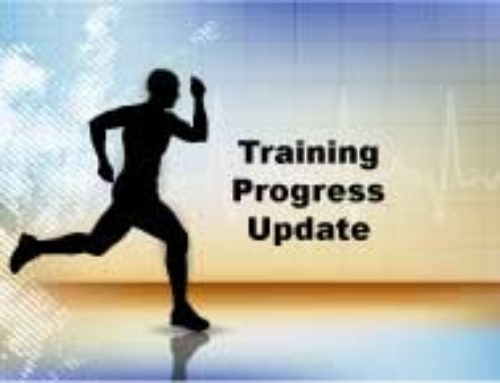 July 6 Training Progress Update